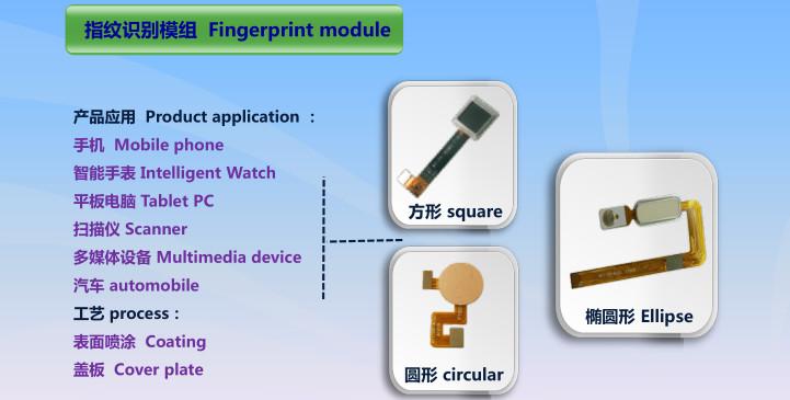 企业项目投资选址:光学显示触控和主板及产业链生产基地项目