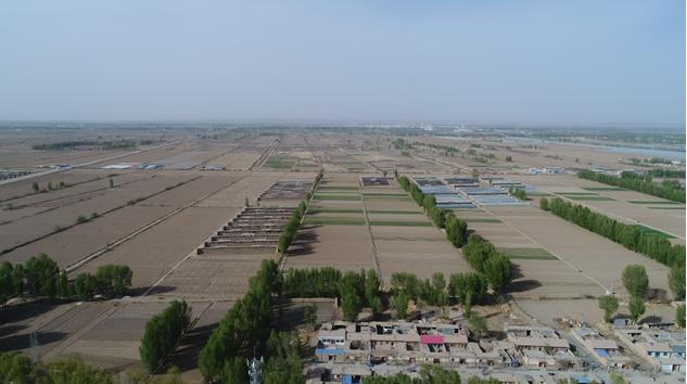 高台县农副产品加工业